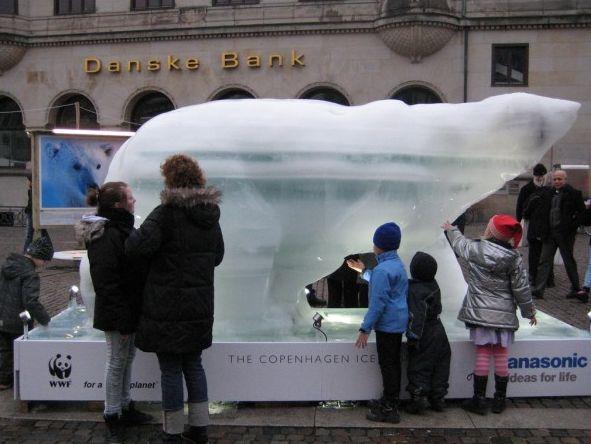 Urso de Gelo