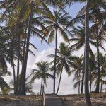 Diário da Marcativa: entre fotos, estradas, o mar e o rio